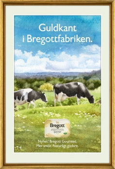 bregott, gourmet, kor, cows,watercolour