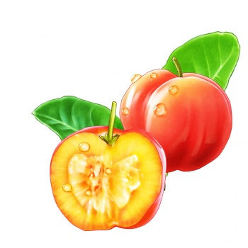 Cherry acerola fruit for läkerol lozenge package leaf körsbär frukt